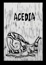ACEDIA - SLOTH